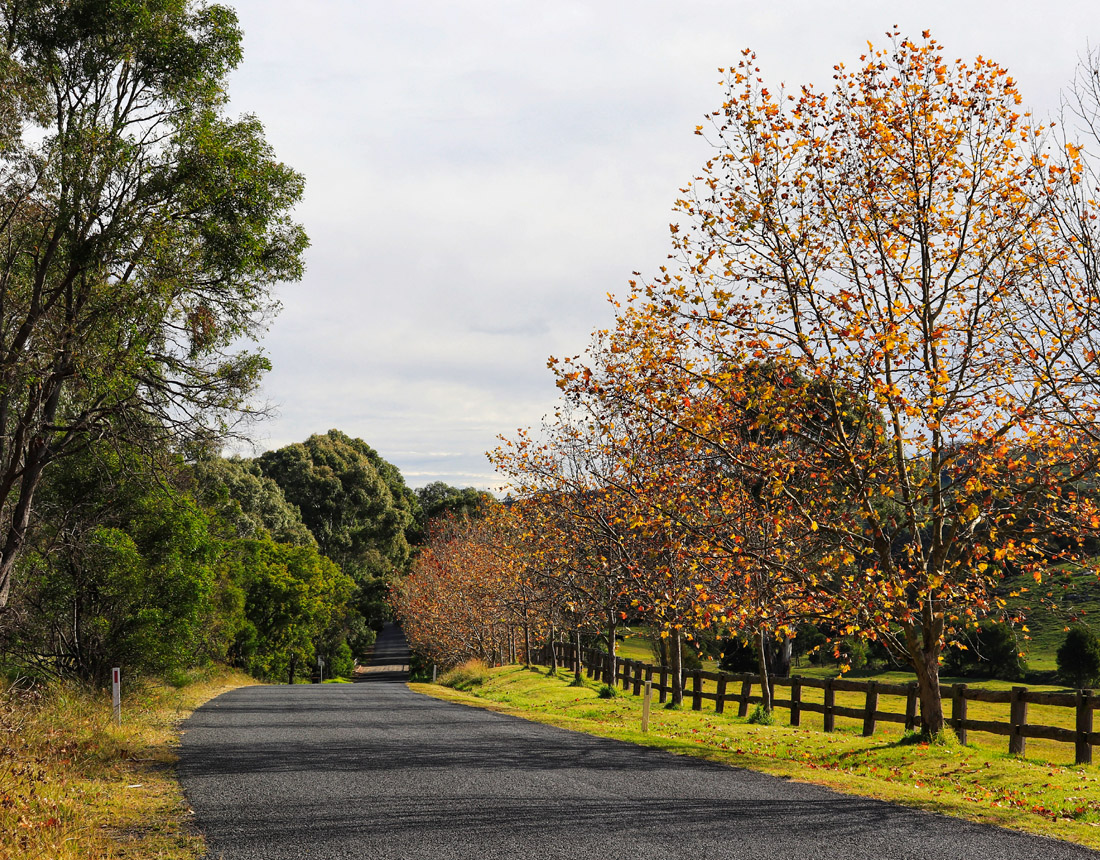 Southern Highlands NSW, country road in Autumn, Blend ESQ Consulting